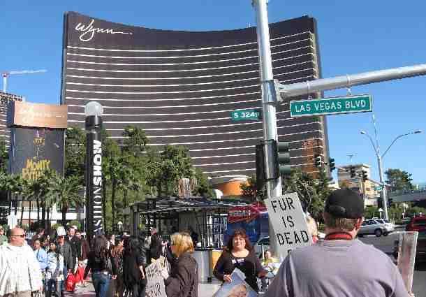 FUR PROTEST Las Vegas Nov 23rd 2007 Las Vegas
