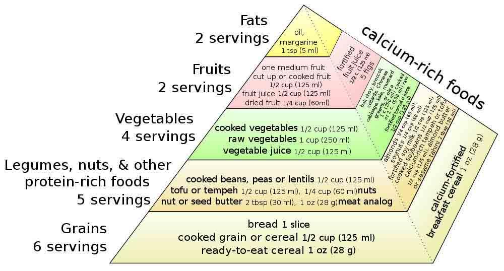Vegetarian diets can help prevent chronic diseases, American Dietetic Association says