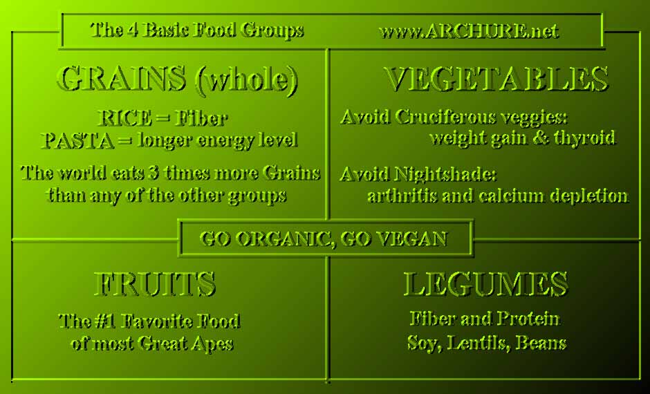 canadian food groups chart. 4 Food Groups concept from
